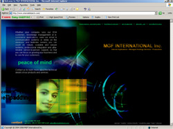 Software Development, Miva Programming, Mivascript Programming, Internet Consulting, Home of the Emerald Objects Application Server